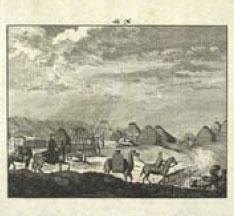 Иллюстрации и титул книги Путешествие...Палласа 1792